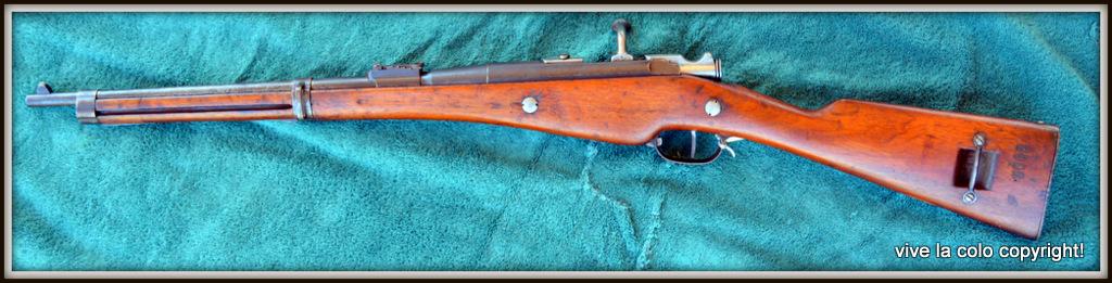 Carabine Berthier 1890 DSC_0046