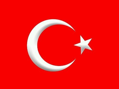 berthier turc - Berthier Turcs Wpid-buyuk-turk-bayrak-1_zps96710889