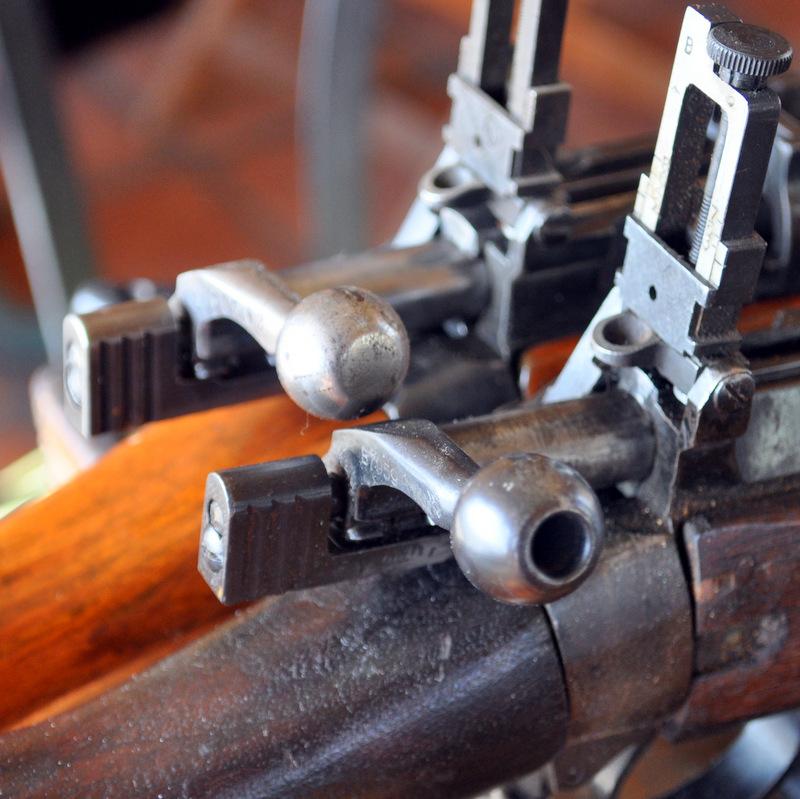 jungle carbine DSC_0400