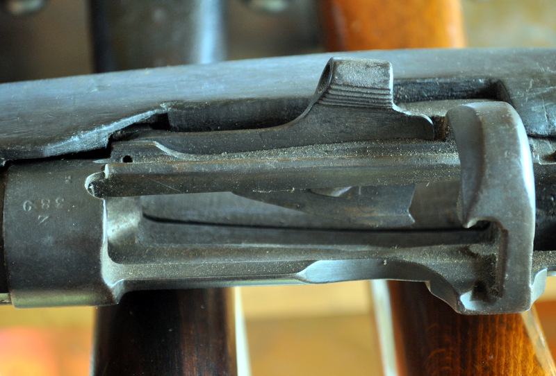 jungle carbine DSC_0436