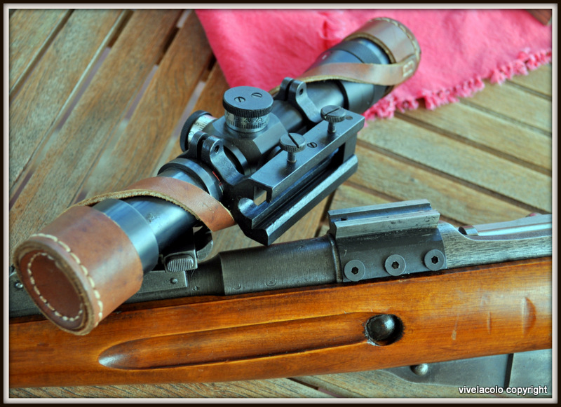 Mosin Nagant/Sniper Ramassis d'elucubrations DSC_0207