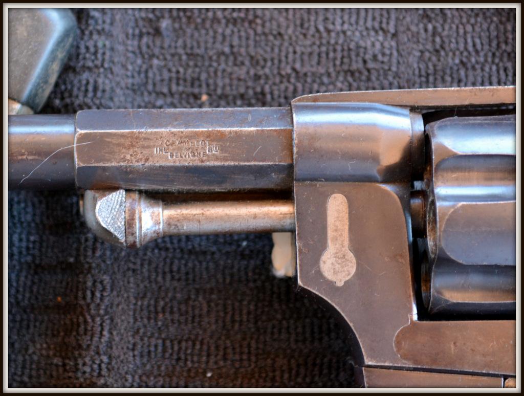 Revolver 1873 (plaquettes) DSC_0038