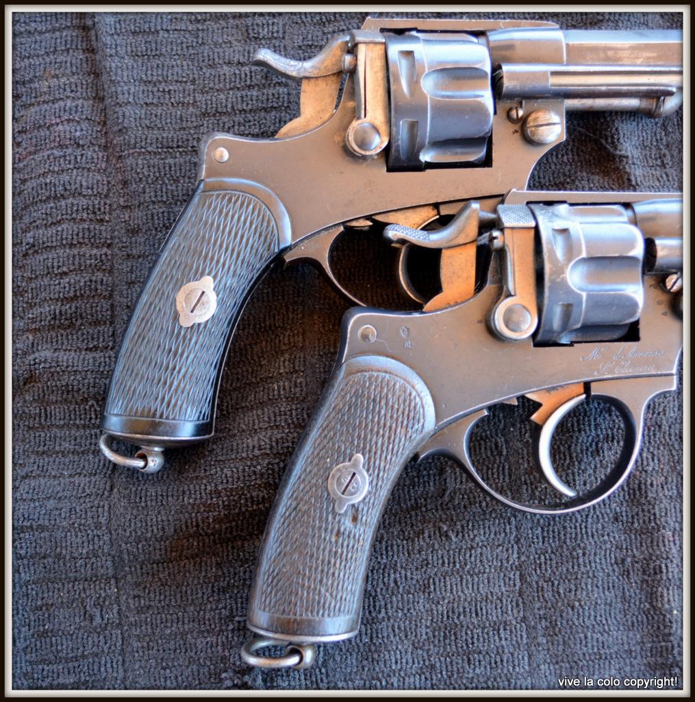 Revolver 1873 (plaquettes) DSC_0031