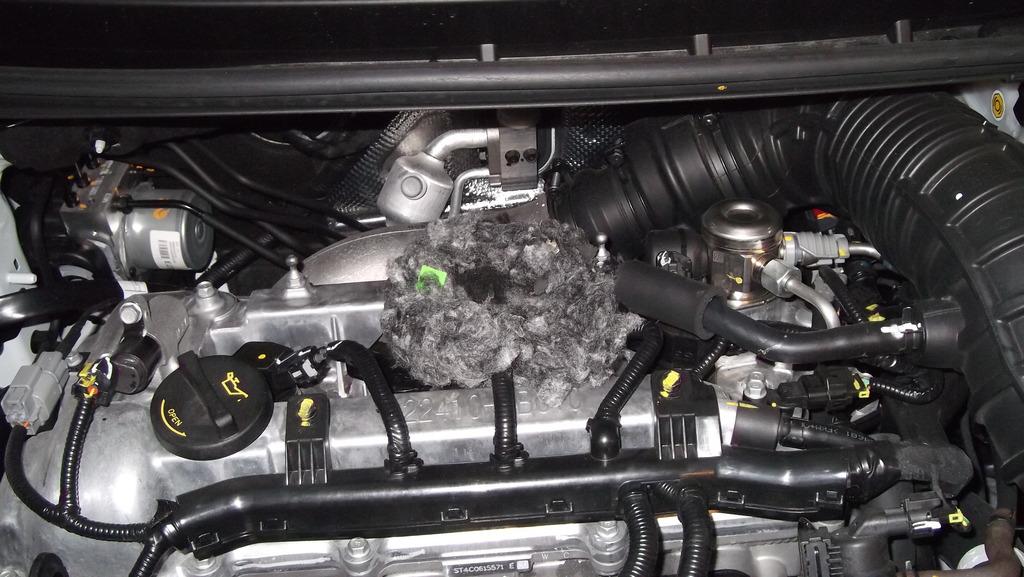 Kia Ceed GT SCoupé - Grippen DSCF1463_zps3ftmttqy