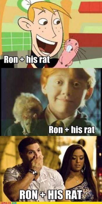 Funny Pics Thread!! Tumblr_ltahmf8JVb1qekdudo1_500