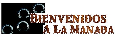 Foro gratis : Spirit El Corcel Indomable Sublogo