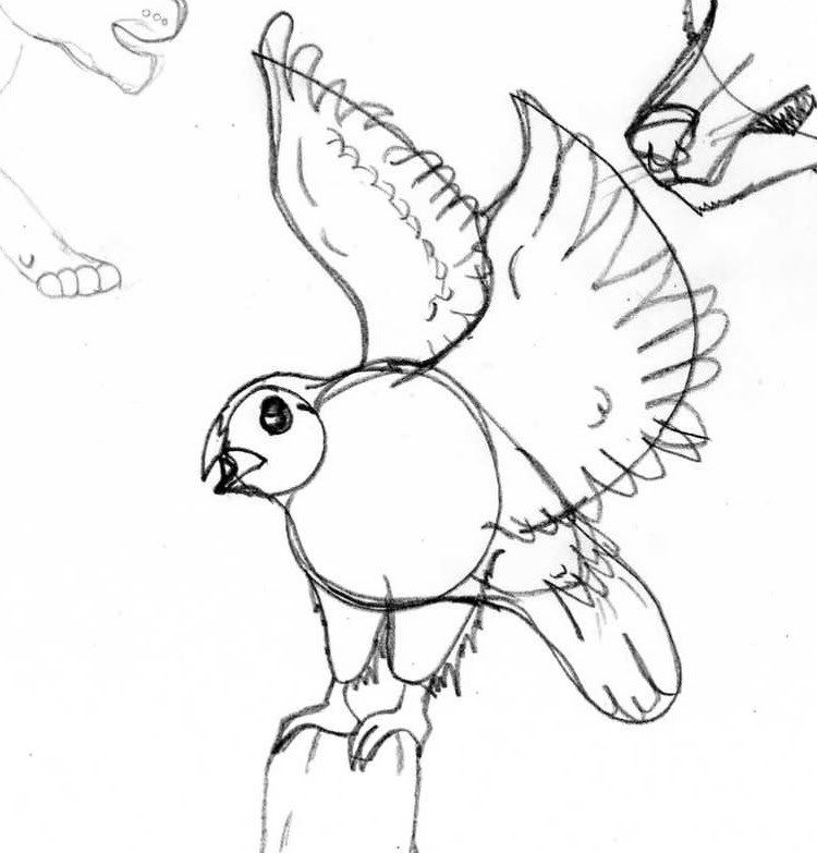 Galería de dibujos de Kivana - Página 2 Aguila-1