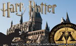 Magical: Wizarding World {3generation} ELITE World