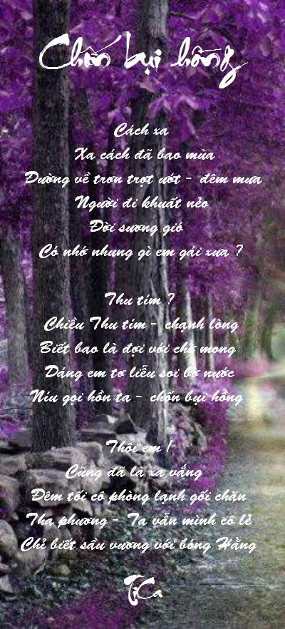 Tranh_Thơ TiCa Chonbuihong_zpsa62f9515