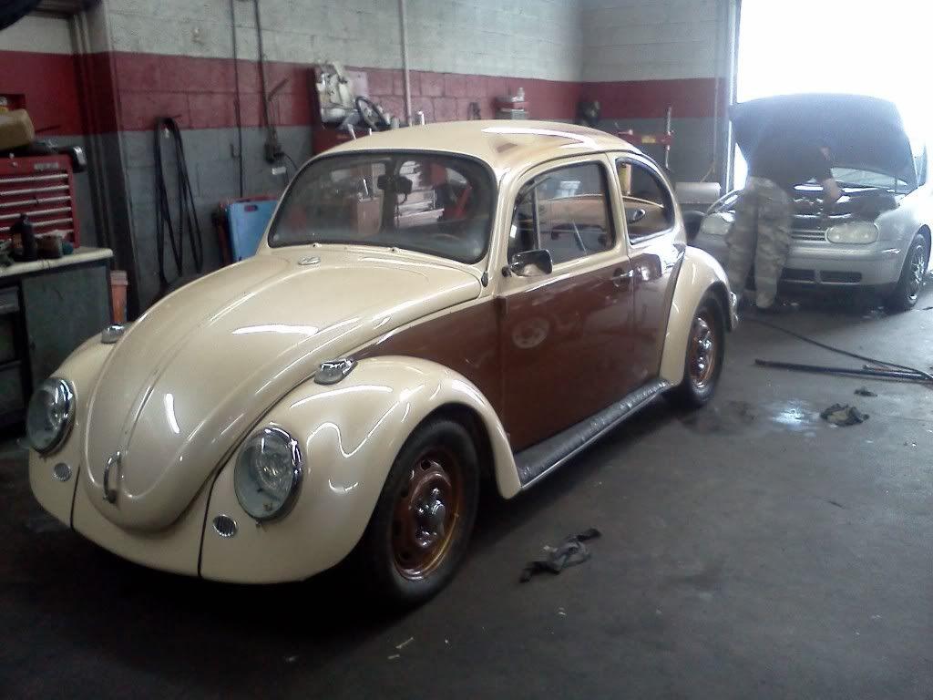 1970 beetle - Page 2 IMG484
