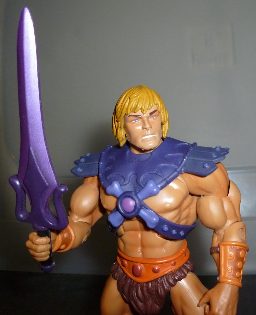 MOTU & MOTUC: The Official Thread - Kitbashes & More Added 10/14/14 - Page 2 P1090064