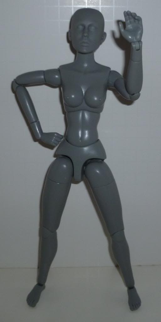 Sideshow Art S. Buck Figures! TONS of Pics! P1090242