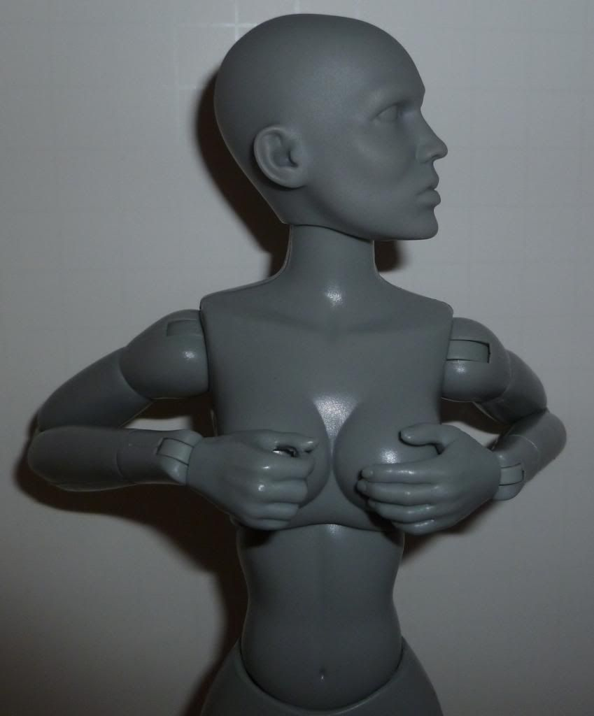 Sideshow Art S. Buck Figures! TONS of Pics! P1090246