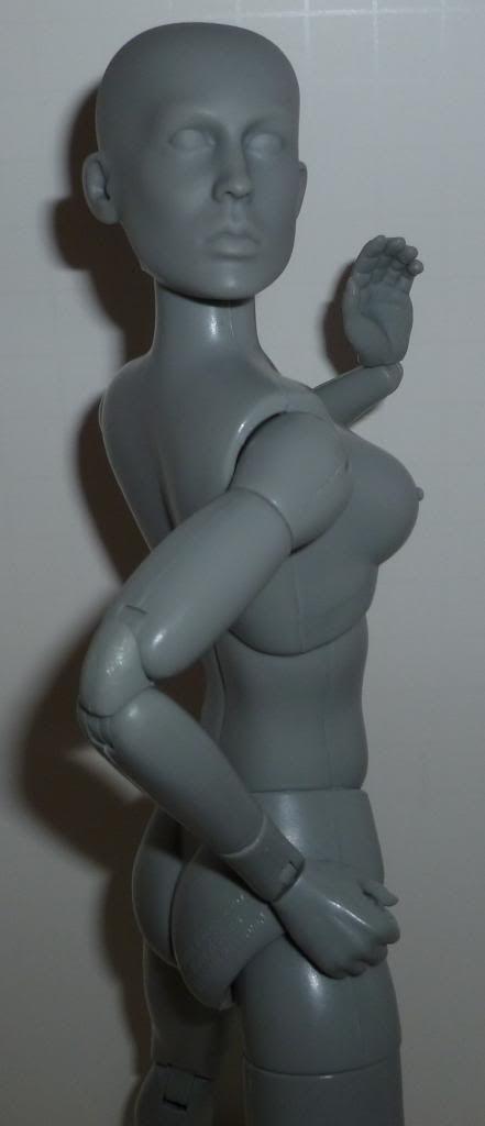 Sideshow Art S. Buck Figures! TONS of Pics! P1090248
