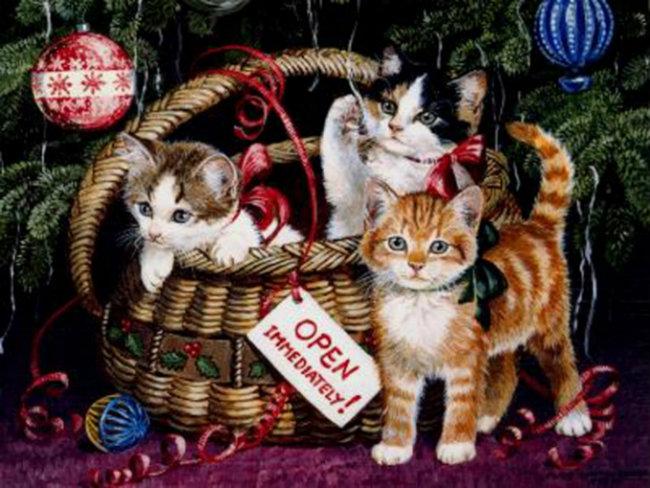 Merry Cat-mas! Vintage-cats-600_zps2dba0540