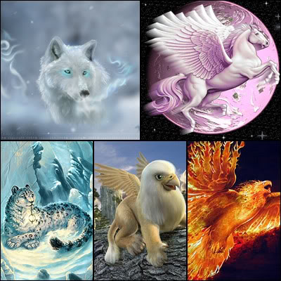 مـعـلومـآتـ نـآدرة MagicAnimals