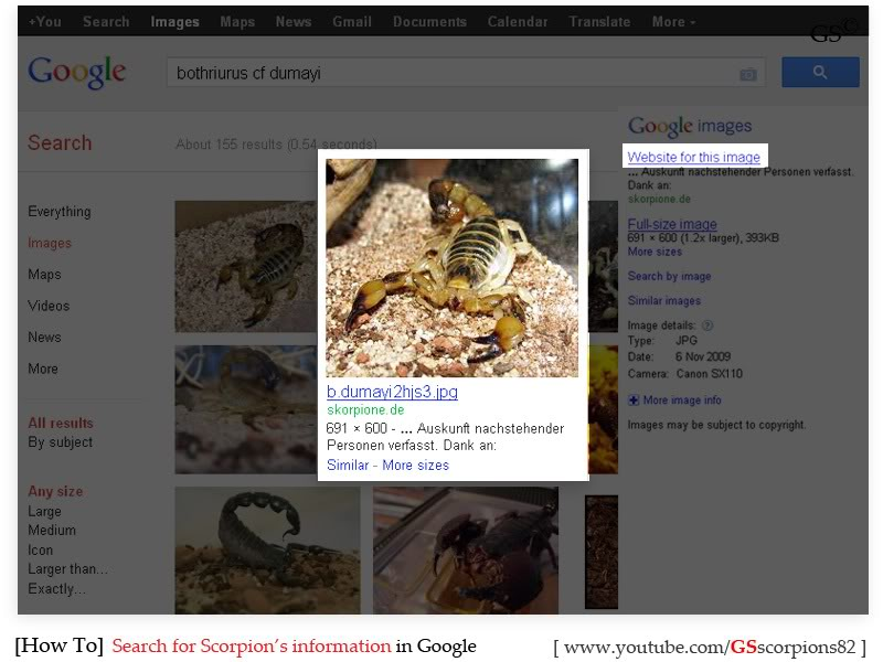 [HOW TO] Search for Scorpion's Information How_to_Search_for_Info_by_GSscorpions82_pic2