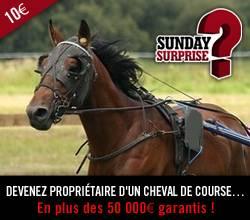 Sunday Surprise, de l'exceptionnel tous les dimanches! - Page 5 SundaySurprise_crm_cheval_zps28bcb8e4