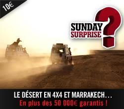 Sunday Surprise, de l'exceptionnel tous les dimanches! - Page 4 WCT_4x4
