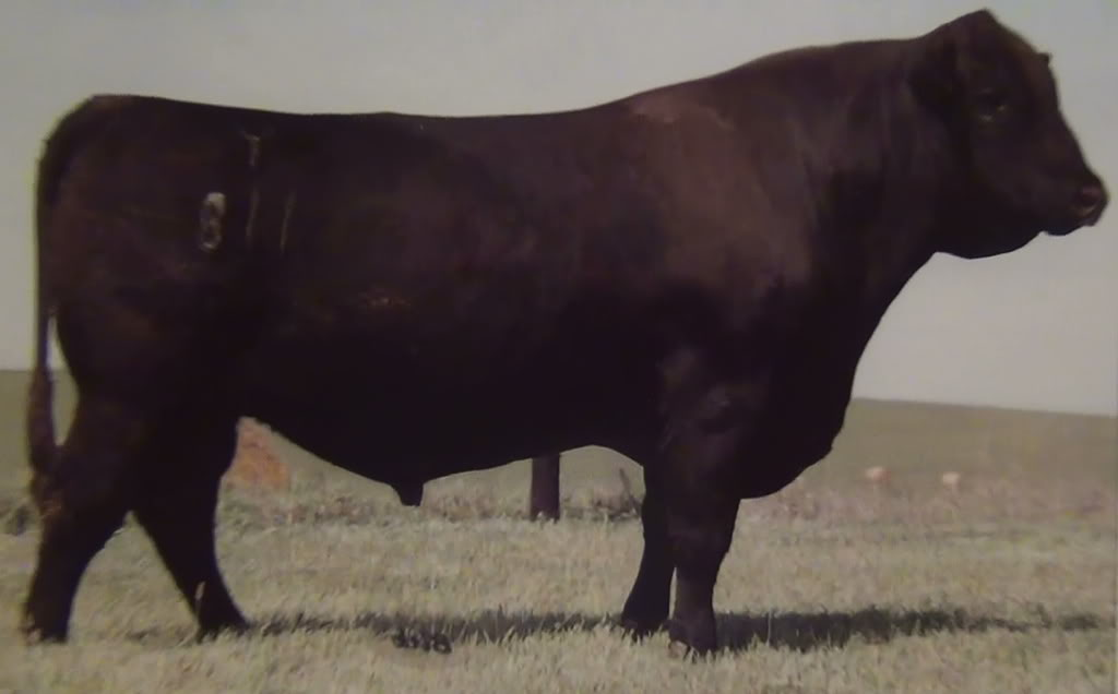 Knowing the cattle, knowing the data - Page 2 6-24-120492