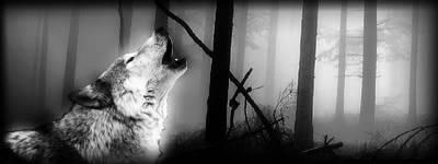Mis creaciones photoshoperas ~ Wolf