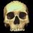 Halloween Secret Swap 2014 Skull-icon-6_zps6969162f