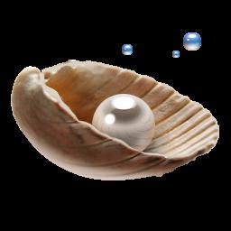Pearl wedding anniversary Pearl-icon