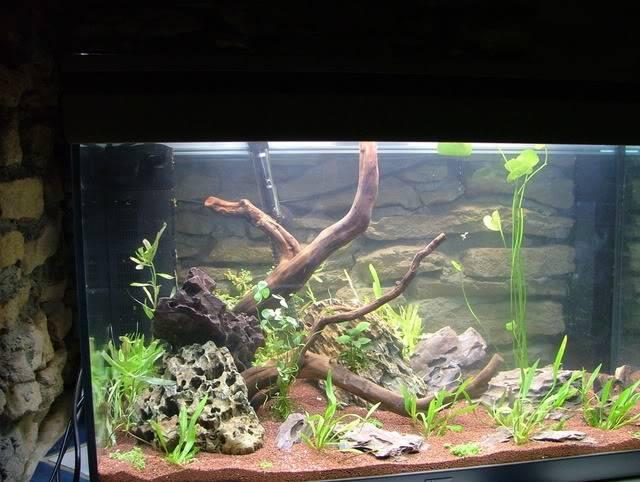Aquarium 160L brut (110L nets) Aqua29012011011