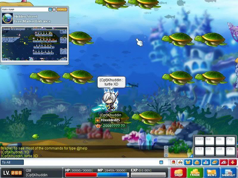 Aqua Free Market  Maple2