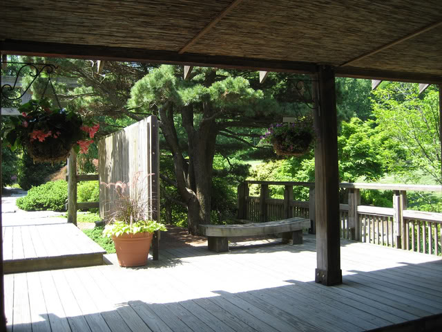 Historia del Kimochi girou 2089333701_b858226b38_b