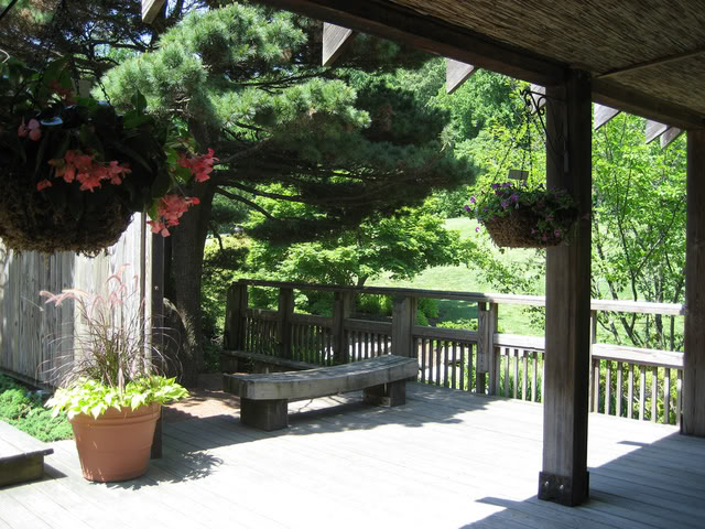Historia del Kimochi girou 2090121536_05248b355f_b