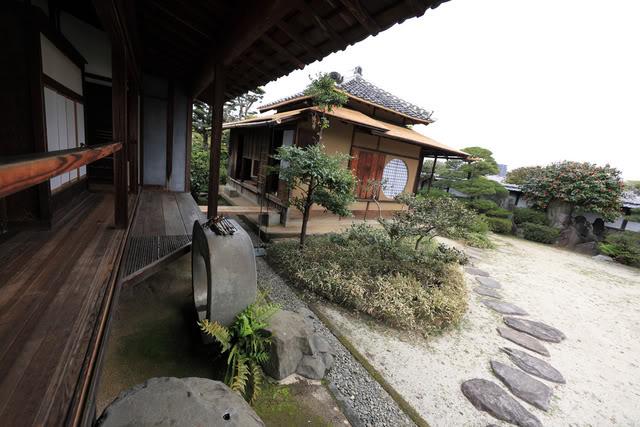 Historia del Kimochi girou 3441295930_3733a59f78_b