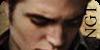 Next Generation Twilight (Confirmacion Afiliacion Elite) 100x50NGT