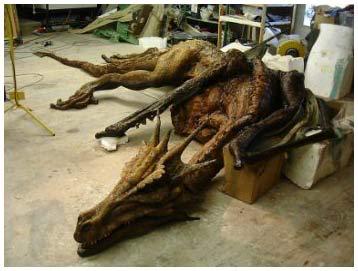 Năm 2012  - và những chuyện người xưa đã thấy rồng !!!!!!!!!!! KHÓ TIN WÁ Dragons_fossils