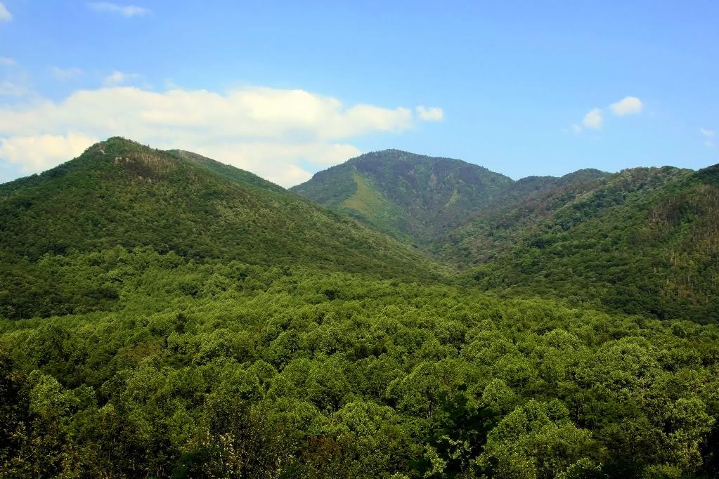 நான் ரசித்த மலைகளின் காட்சிகள் சில.... - Page 4 Tennessee2007175-2
