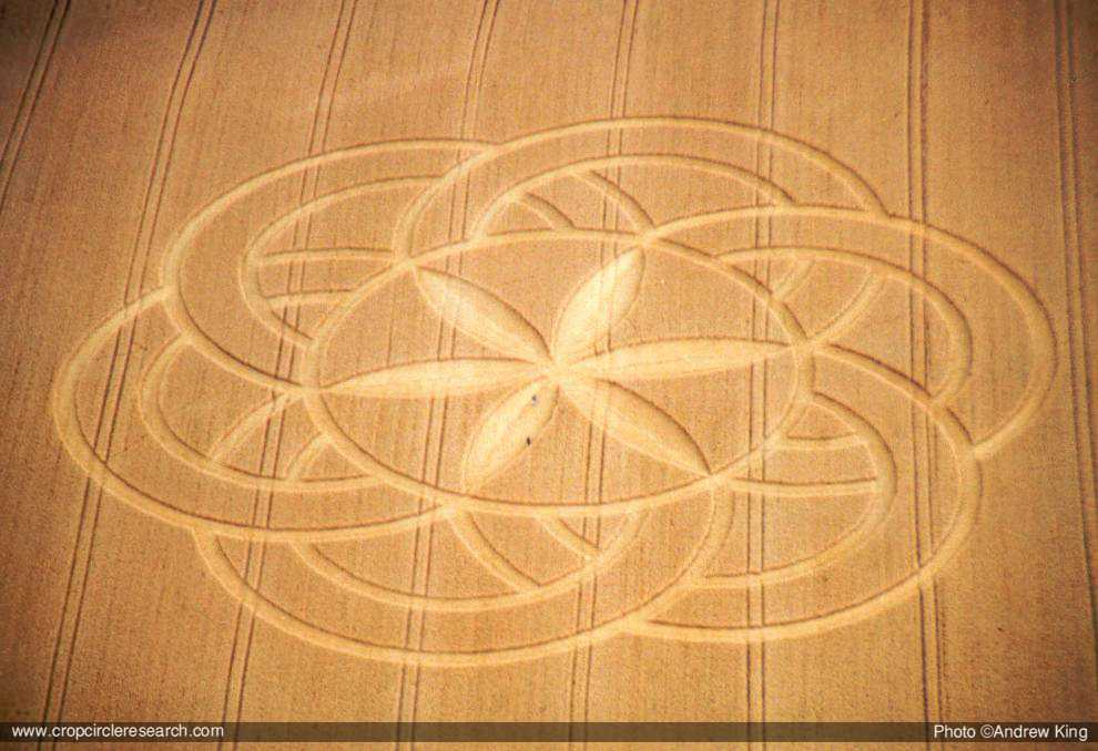 Crop Circles 2012 04-02-Bonus22deJuliode2003