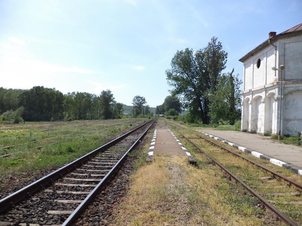 901 : Bucuresti Nord - Titu - Pitesti - Piatra Olt - Craiova - Pagina 5 DSC00379_zpscda2392b