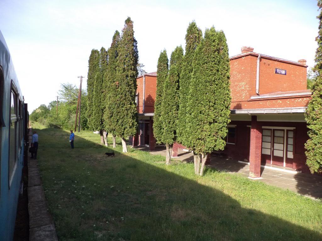 901 : Bucuresti Nord - Titu - Pitesti - Piatra Olt - Craiova - Pagina 5 DSC00401_zps300eaec3