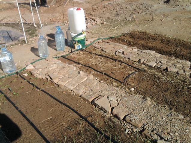 Proyecto huerto urbano - Página 2 2012-02-12114012_637x478