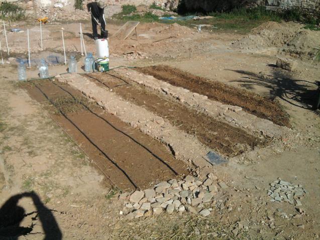 Proyecto huerto urbano - Página 2 2012-02-12114037_637x478
