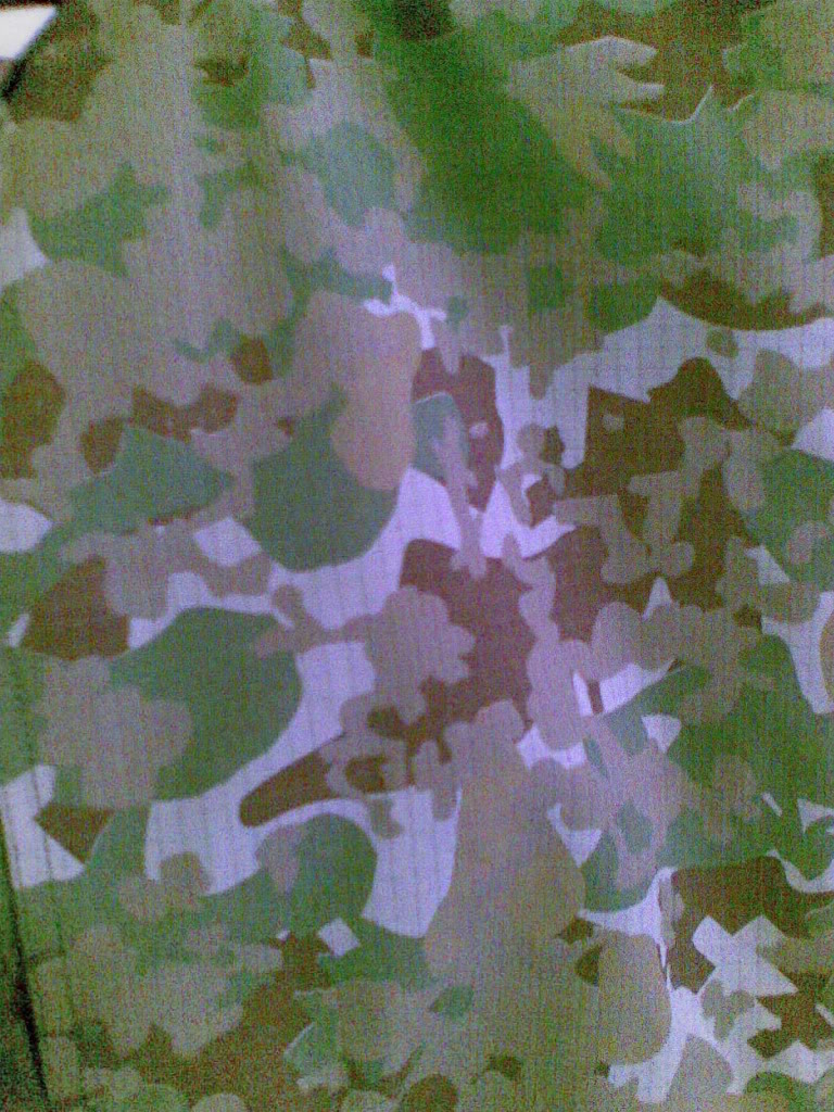 New 2011 camo uniform NaujausiasLTLKcamo