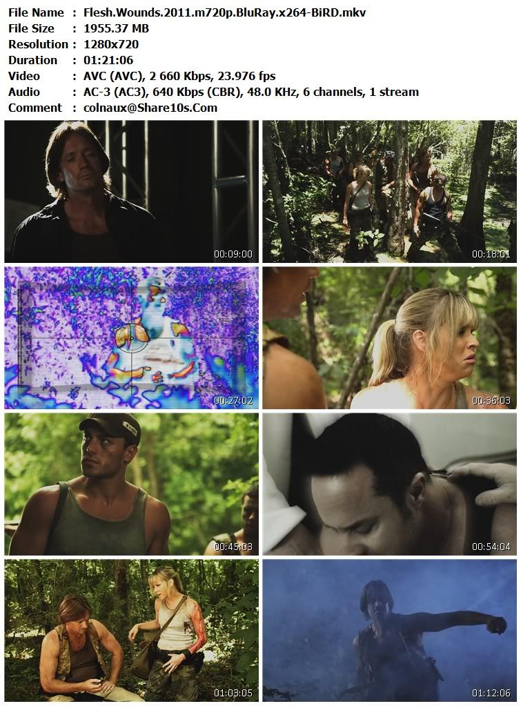 Flesh Wounds (2011) 720p BluRay DTS x264-DNL.mkv FleshWounds2011