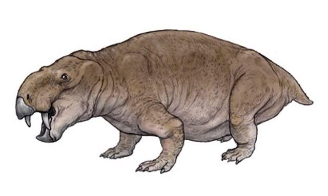Dinodontosaurus Di-dinodontosaurus