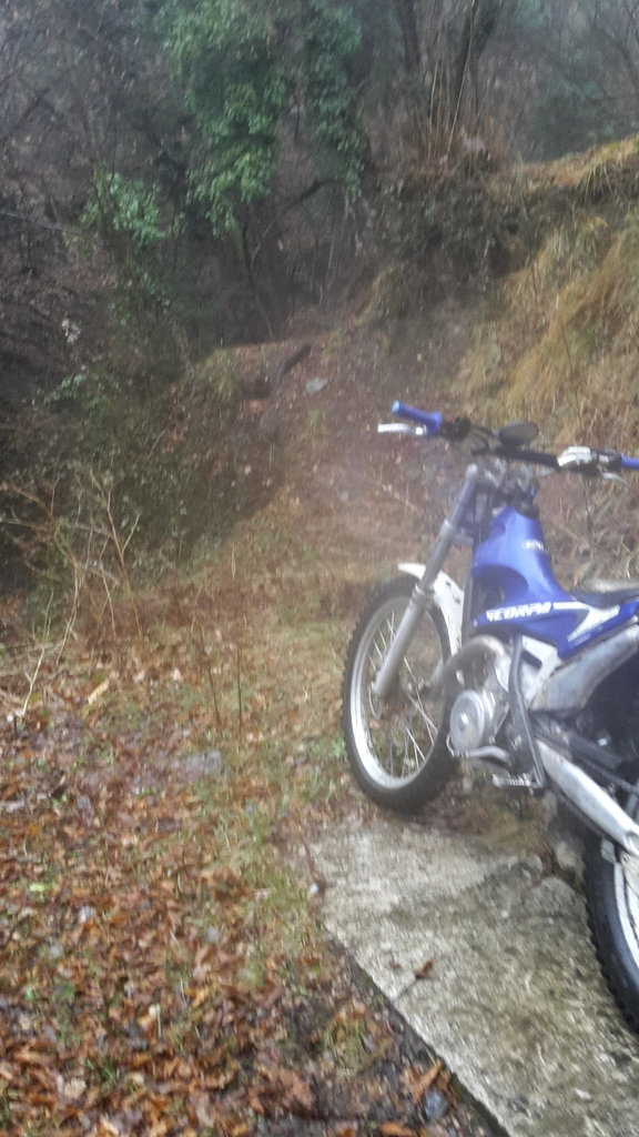 scorpa 250 long ride - Page 2 20170205_110116_zpsbco5mrhr