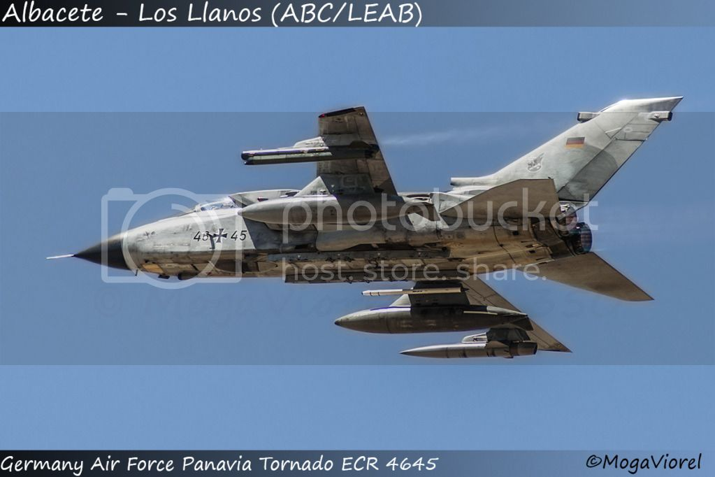 Albacete - Los Llanos (ABC/LEAB) DSC_4886gd