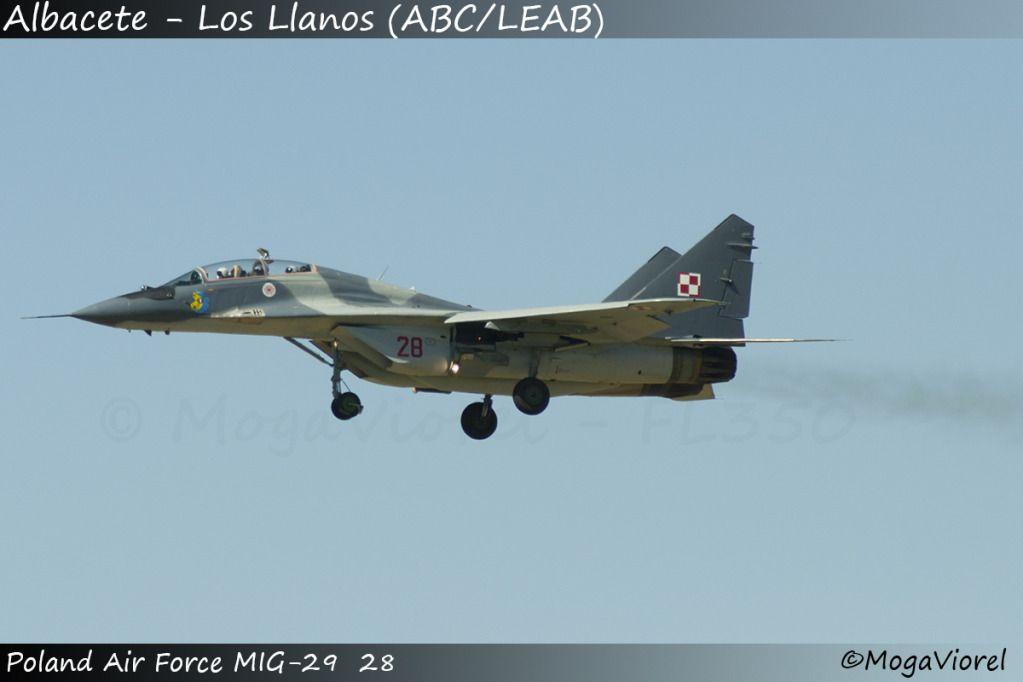 Albacete - Los Llanos (ABC/LEAB) DSC_5000