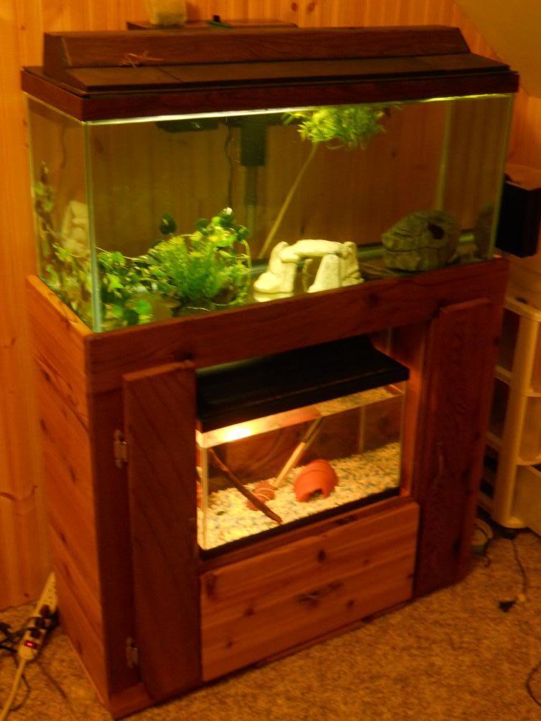 Mulit fish tank stand DSCN1427