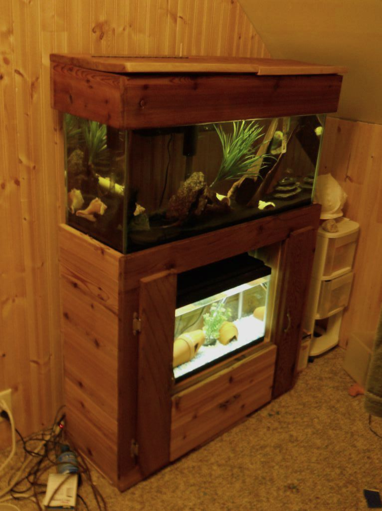 stand i'm makeing for 55 gallon and a ten DSCN1782