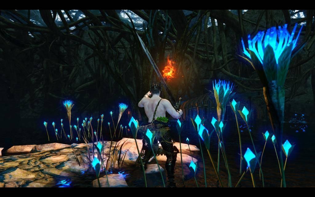 Adventures in Drangleic Shrine_zps9603eea9