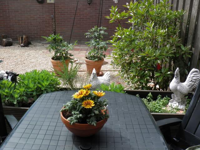 Jardins P5200004